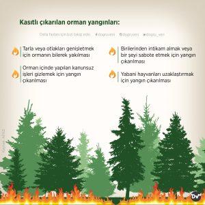 orman_yangınları_nedenleri_2_istatistik