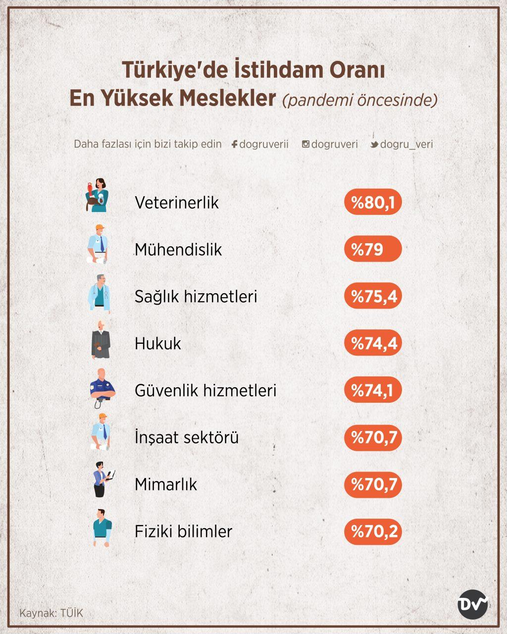 Türkiye'de İstihdam Oranı En Yüksek Meslekler, 2019